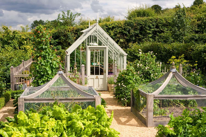 Kew drivhuskolleksjon: Capel